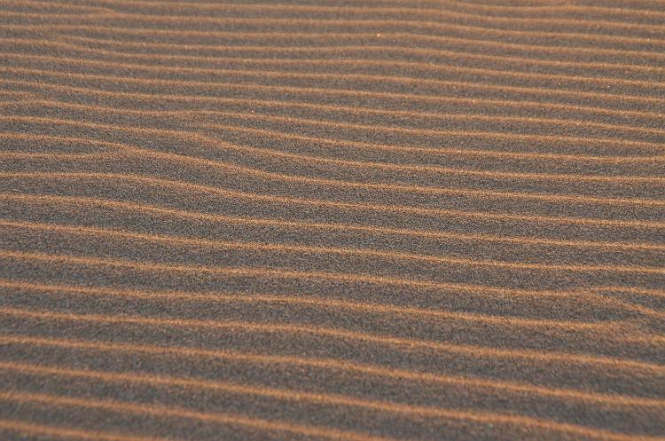遠州灘の夜明け 5