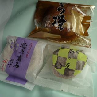 20110328_katsura1