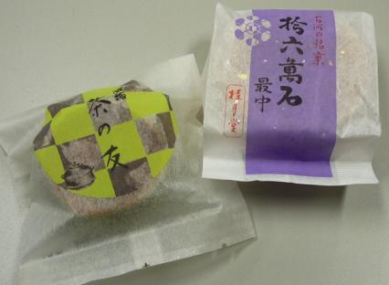 20110329_katsura4