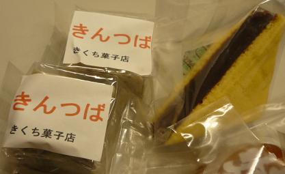 20110408_kikuchi3