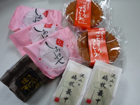 20110411_tachikawa