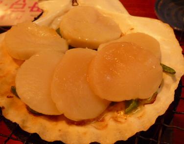 20110410_yakko3