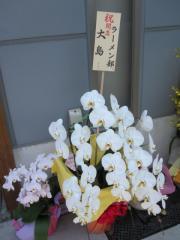 【新店】大島-13