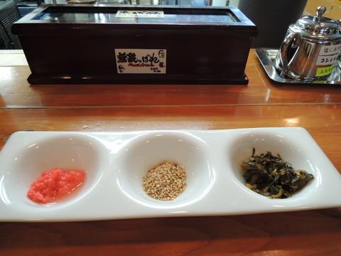 別皿の薬味(紅ショウガ、白ゴマ、高菜)