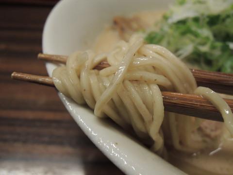 豚鶏節らーめん3.0の麺