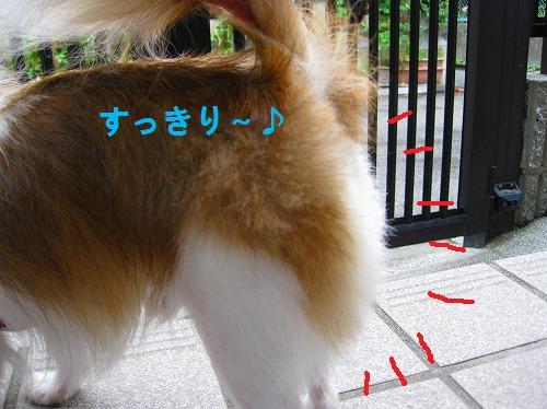 s-IMG_0306.jpg