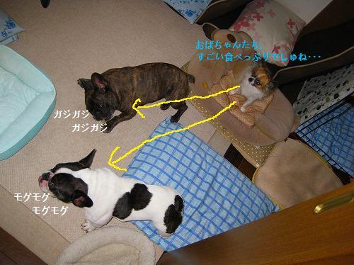 s-IMG_0313.jpg