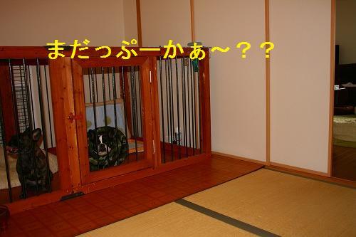 s-IMG_1287.jpg