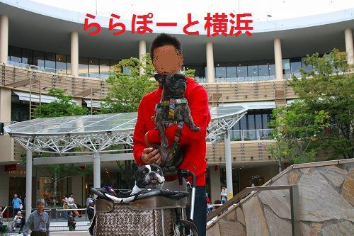 s-IMG_2485.jpg