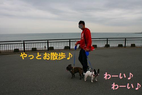 s-IMG_2499.jpg