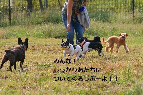 s-IMG_2642.jpg