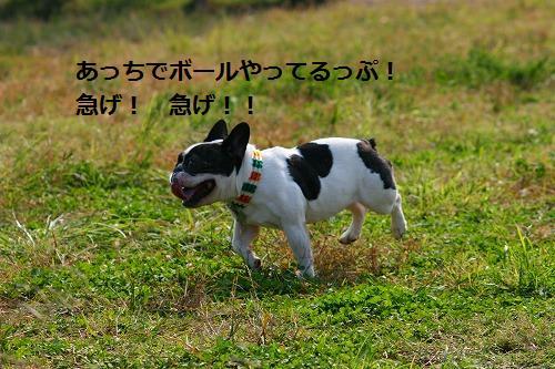 s-IMG_2705.jpg
