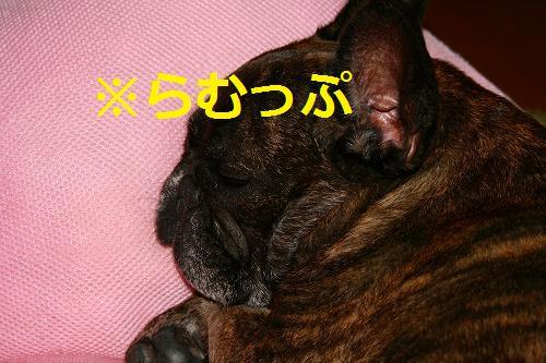 s-IMG_3190.jpg