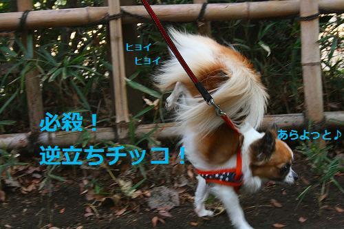 s-IMG_3285.jpg