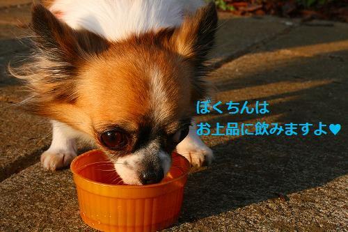s-IMG_3302.jpg