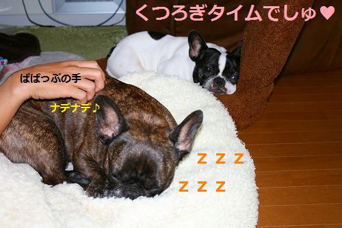 s-IMG_3443.jpg