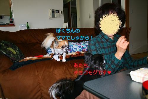s-IMG_3552.jpg