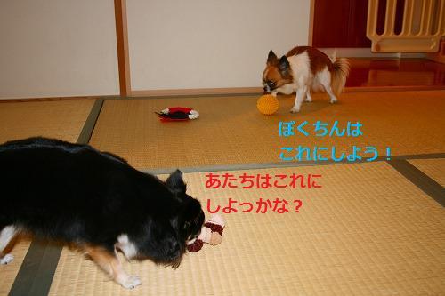 s-IMG_3579.jpg