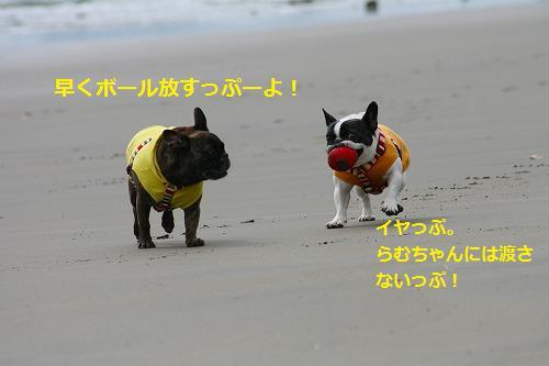 s-IMG_3894.jpg