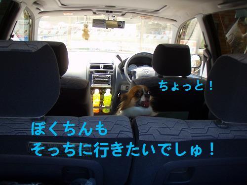 s-P7170005.jpg
