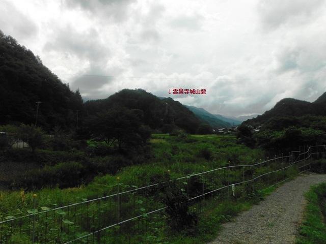 霊泉寺城山砦 (59)
