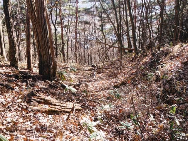 下畑下の城(佐久穂町) (15)