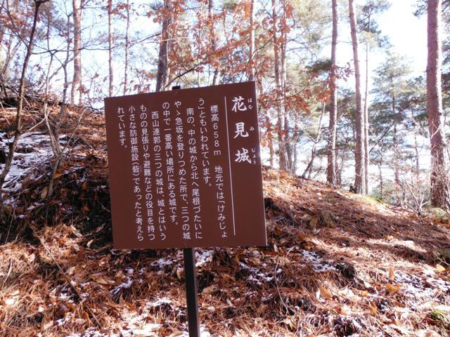 金剛寺西山城砦群 (41)