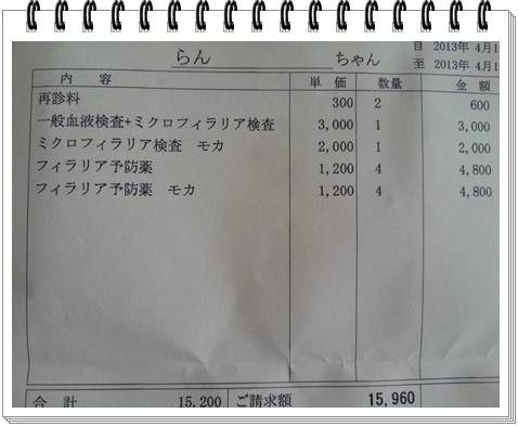130419-2.jpg