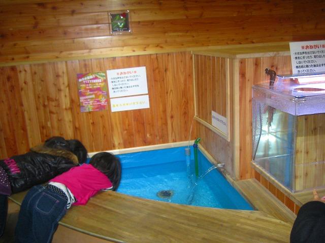 山の水族館 108