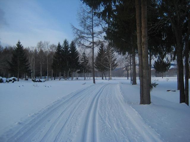 歩くスキー 067