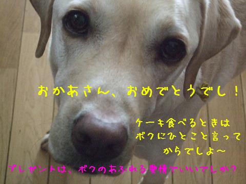 001_20130109210332.jpg