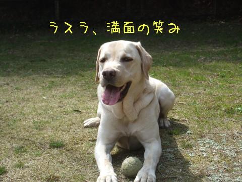003_20130325164704.jpg