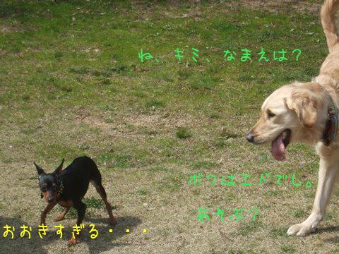 006_20130325165204.jpg