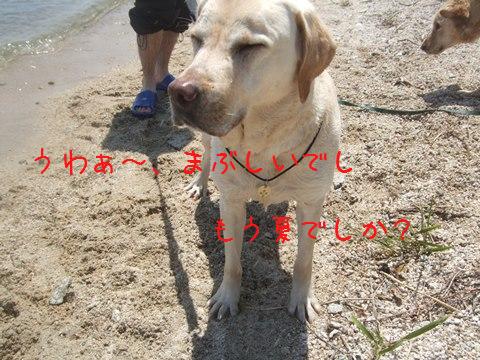 006_20130512212255.jpg