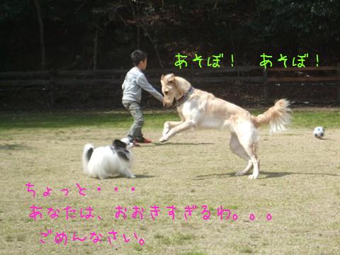 007_20130325165207.jpg