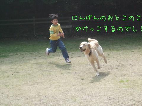 013_20130325165211.jpg