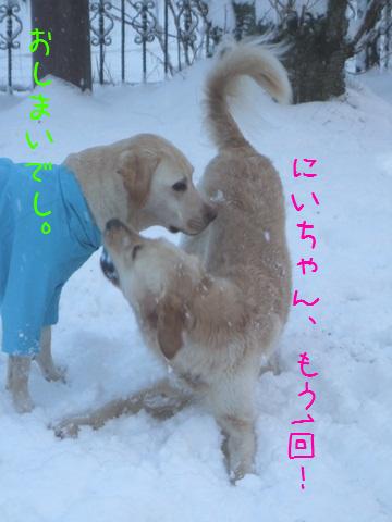 025_20130118114750.jpg