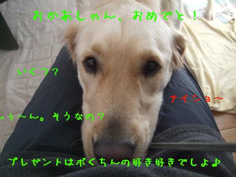 042_20130109210336.jpg