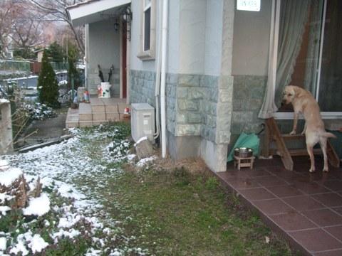 2010_03305gatu0004.jpg