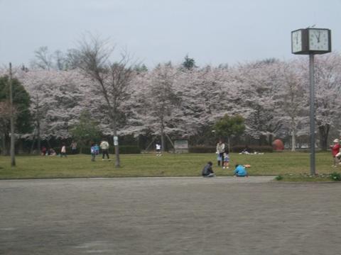 2010_04055gatu0001.jpg