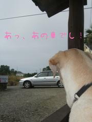 2010_06175gatu0022.jpg