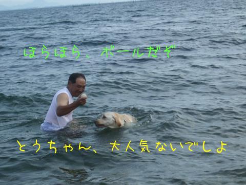 2010_08155gatu0005.jpg