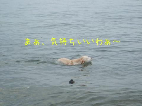 2010_09195gatu0024.jpg