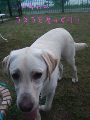 2010_09195gatu0037.jpg