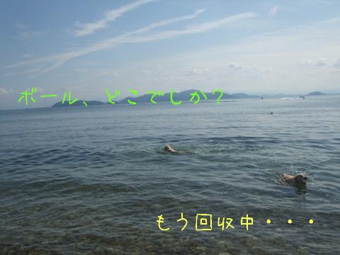 2010_09275gatu0018.jpg