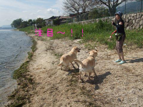2010_09275gatu0019.jpg