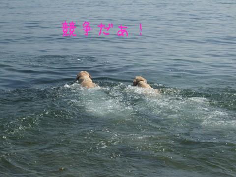 2010_09275gatu0022.jpg