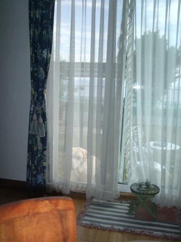 2010_09275gatu0037.jpg