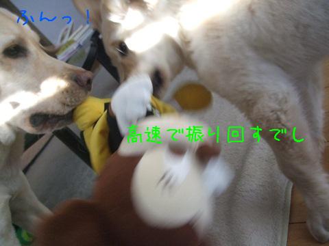 DSCF4023_20110226205622.jpg