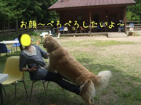DSCF4029_20110518203749.jpg